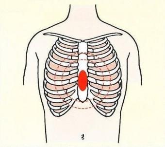 胸骨圧迫部位